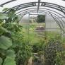 Zahradní skleník z polykarbonátu Gardentec Classic